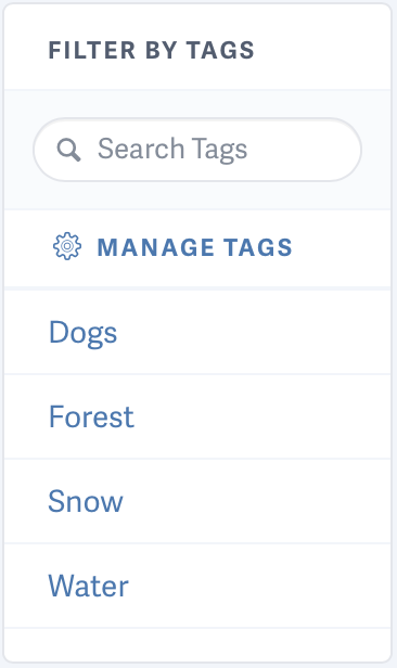 Tags for videos hosted on SproutVideo