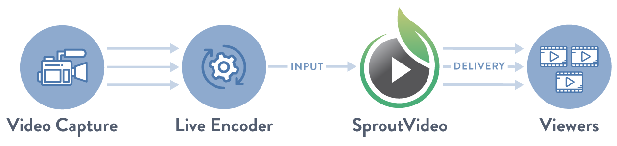 Input and Delivery Minutes Explained
